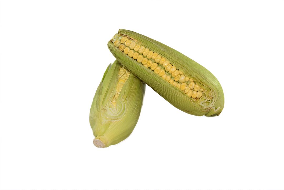 Mazorca Choclo Kilo 1000 G