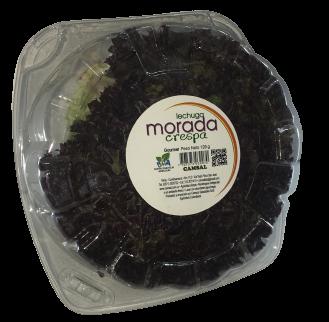 Lechuga Gourmet Crespa Morada 120 G